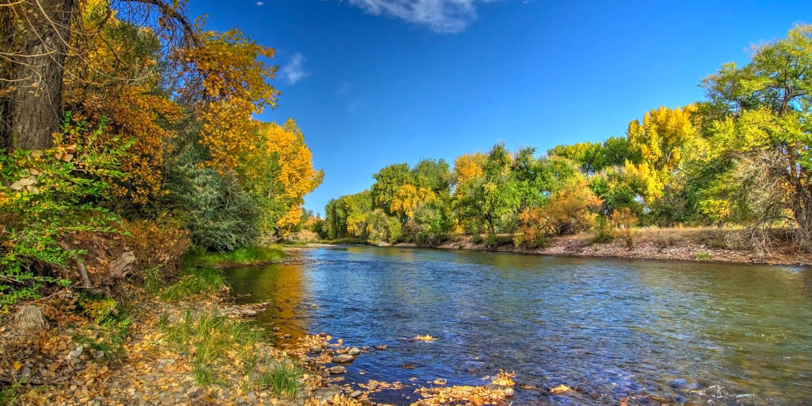The Arkansas River in Colorado during the fall