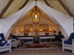 Image of one of the tents at Black Tree Resort in Colorado