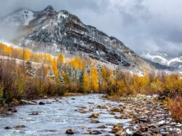 Image of the Dolores River in Colorado during winter