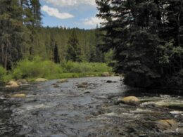 Image of the Fryingpan River in Colorado.