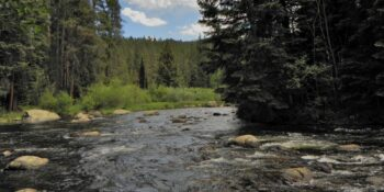 Image of the Fryingpan River in Colorado.