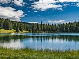 Grand Mesa National Forest Lake