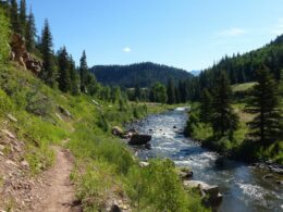 Image of the Piedra River in Colorado