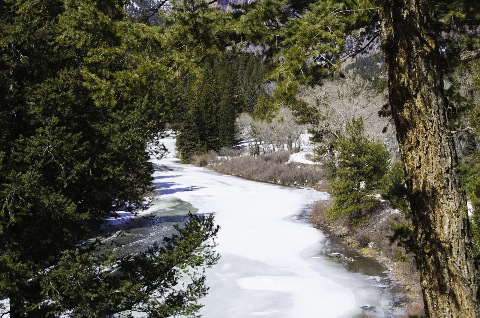 Image of an ice-covered Rio Grande River
