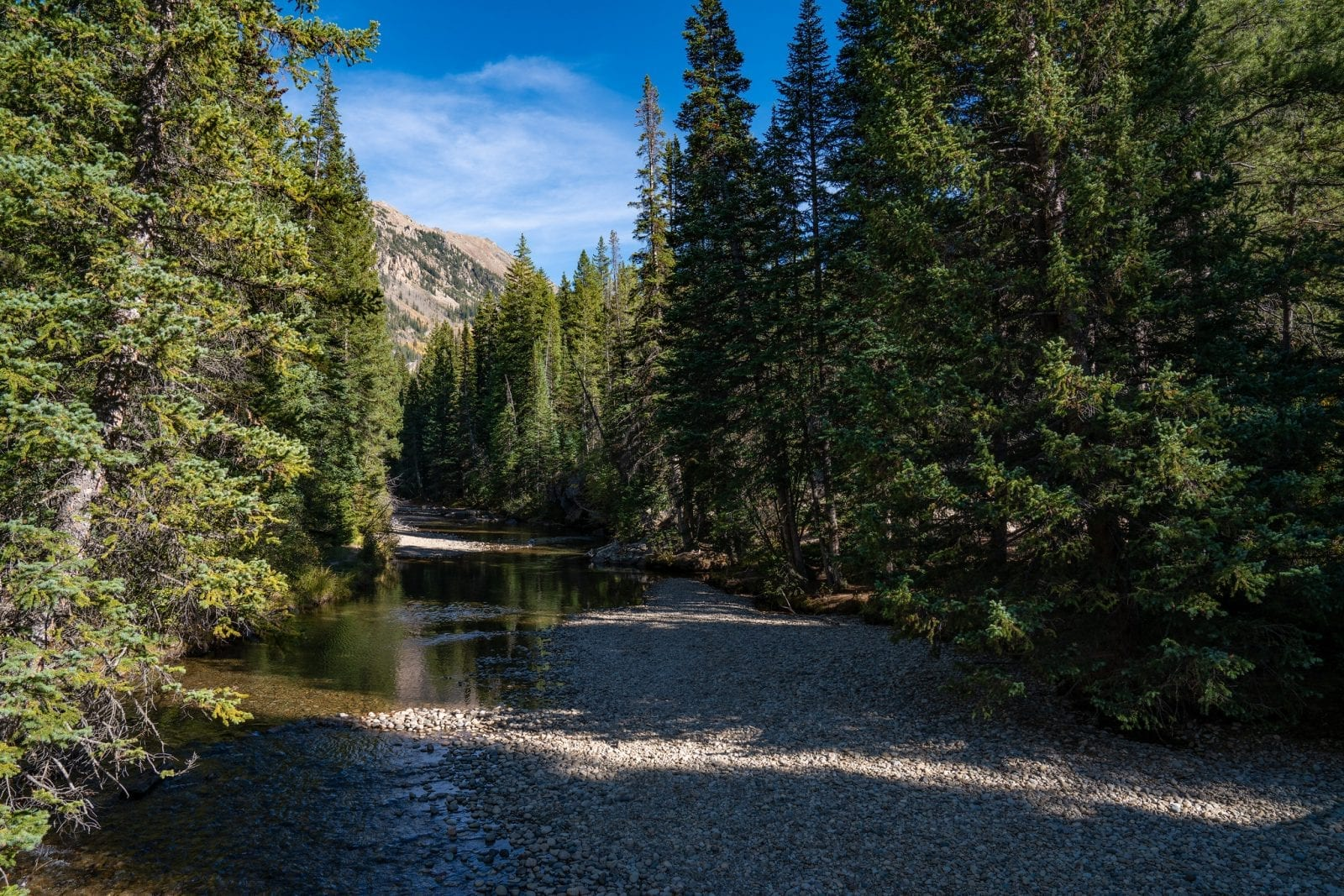 Image of the Roaring Fork River near Independence Pass in Colorado