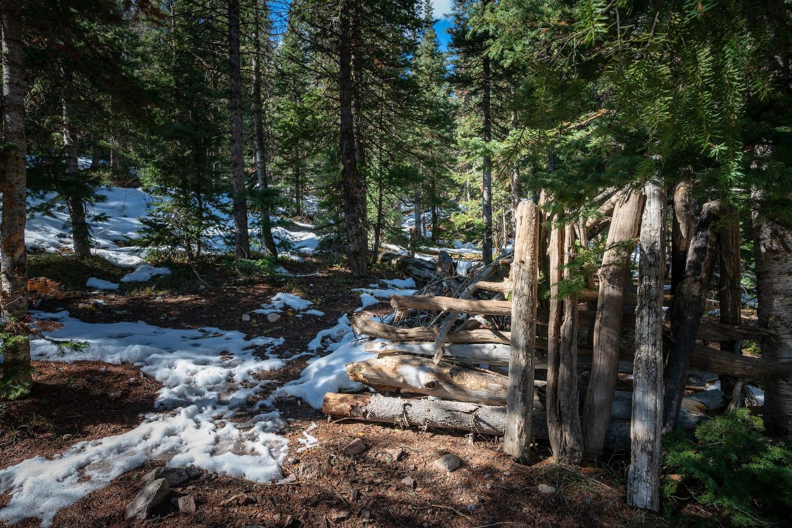 Spud Lake Trail Colorado