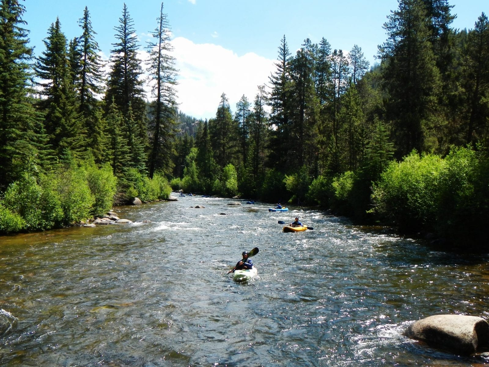 Image of kayakers on the Taylor River in Colorado