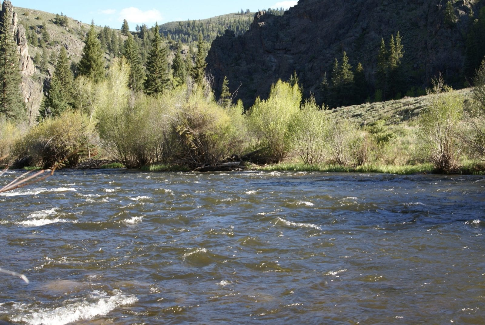 Image of the Taylor River near Almont