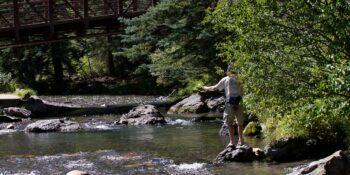 Fly Fishing Telluride Colorado