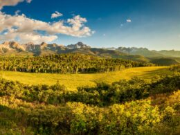 Uncompahgre National Forest Sneffels Range Panorama