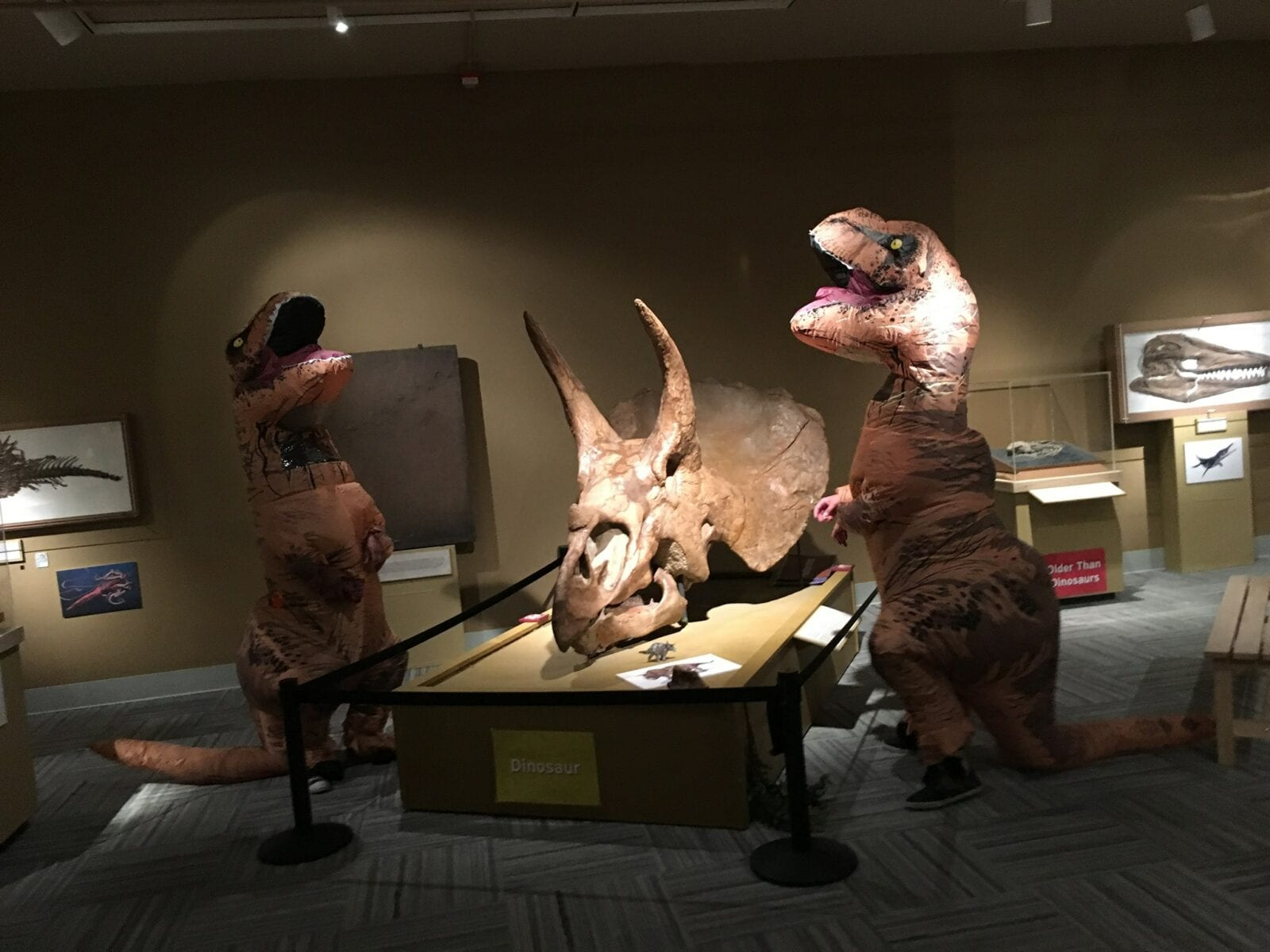 Image of dinosaurs at the CU Museum of Natural History