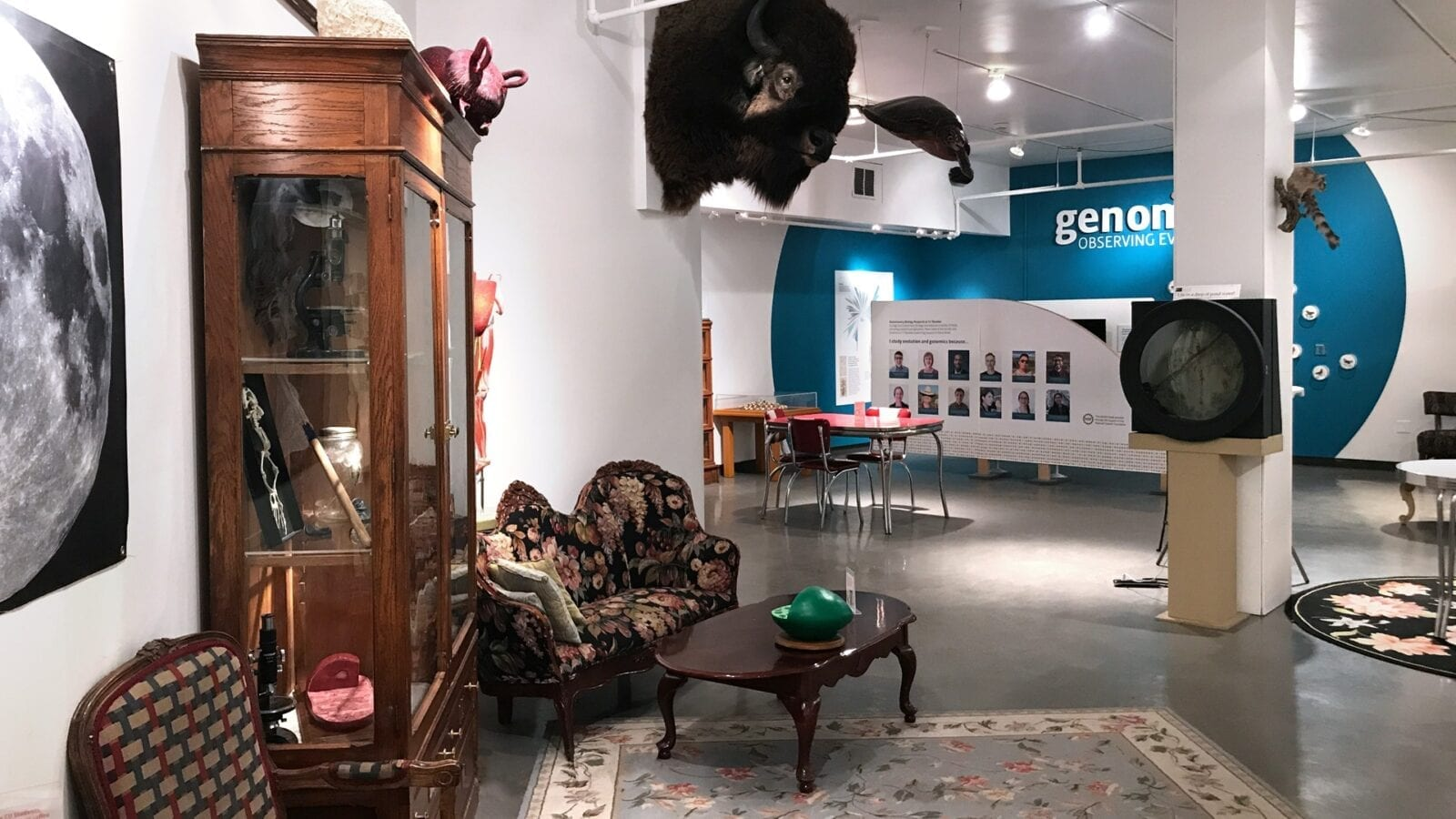 Image of and exhibit at the CU Museum of Natural History