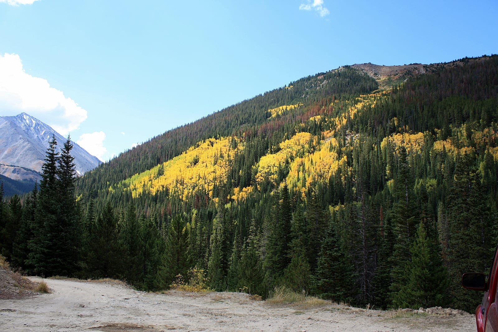 Leaf Peeping at Grays Peak Trail, Colorado