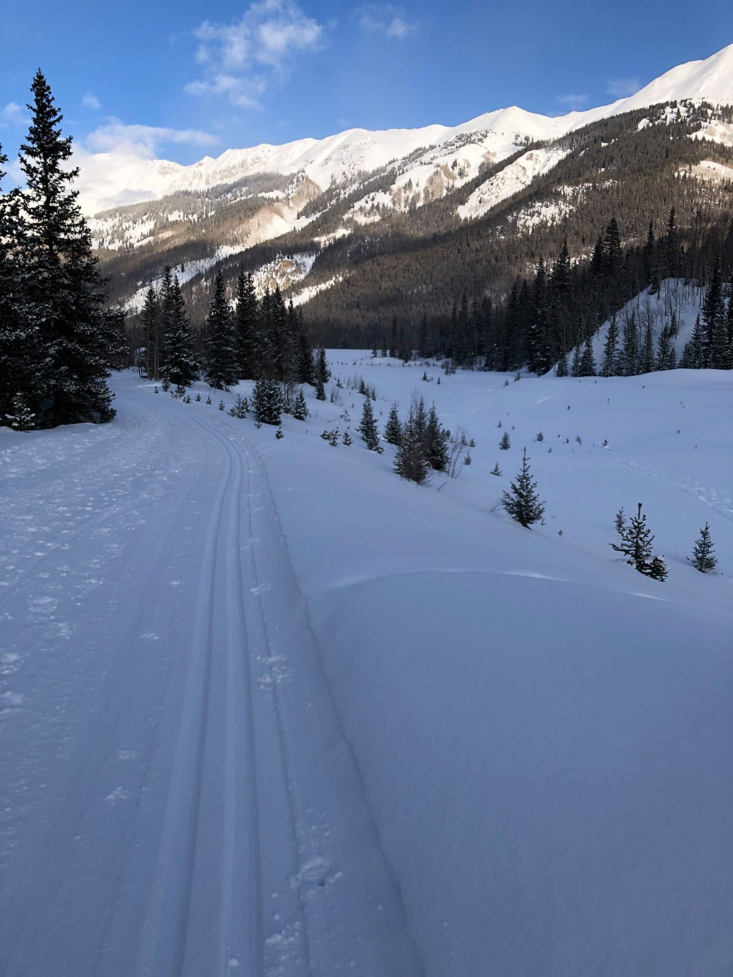 image of ouray county nordic trails