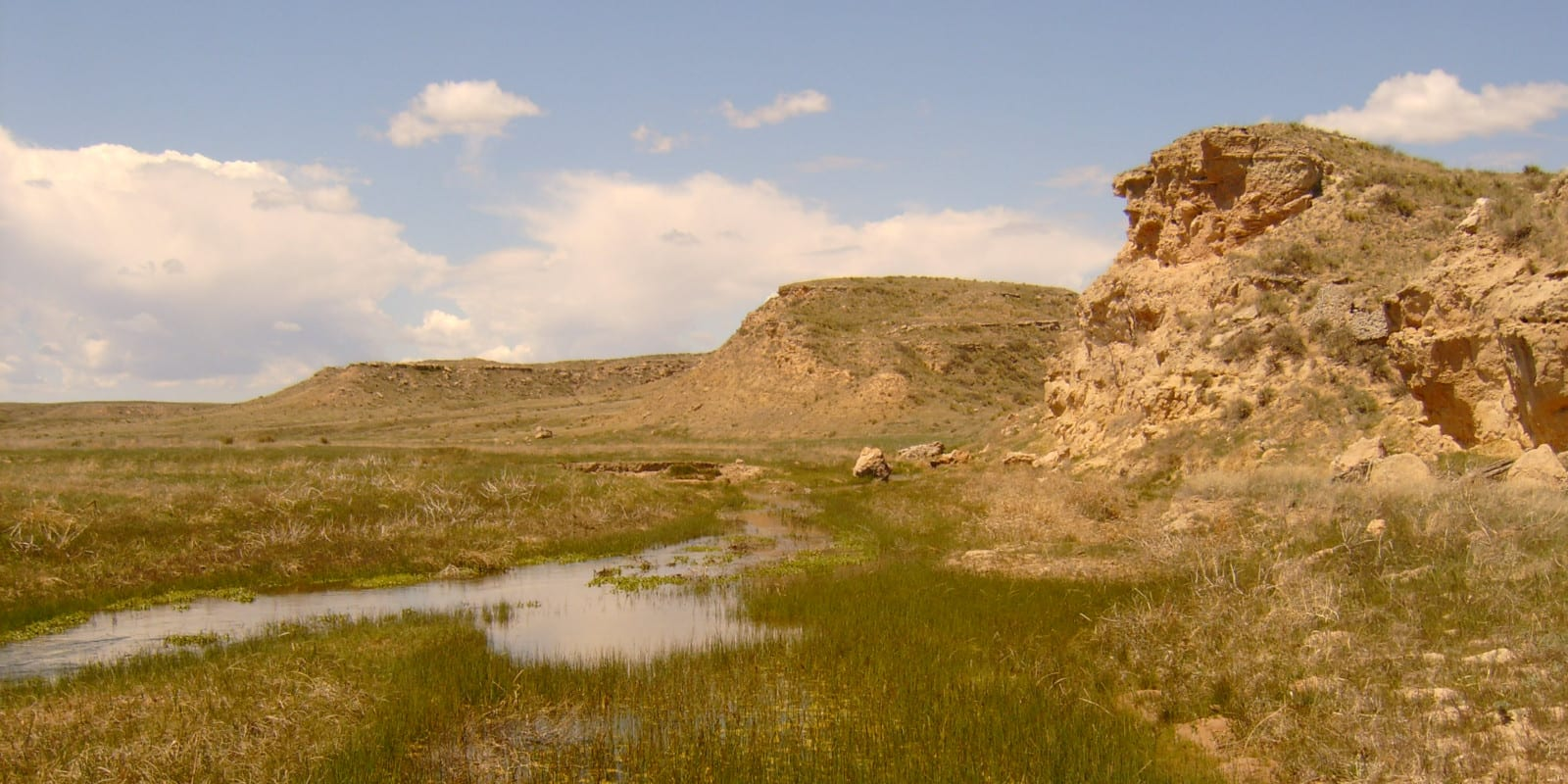 Image of the Arikaree River in the great plains