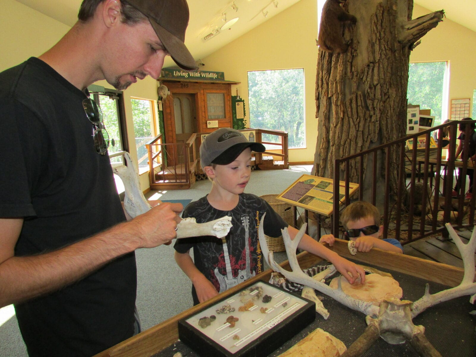 Image of children interacting with different exhibits in the Bear Creek Nature Center in Colorado Springs, Colorado