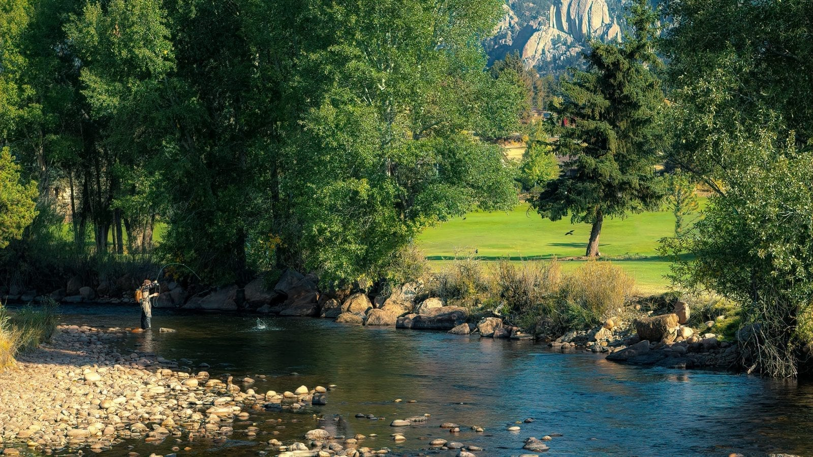 Image of a man fly fishing on the Big Thompson River in Colorado