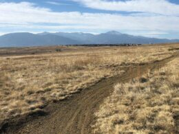 Image of a path at the Bluestem Prairie Open Space in Colorado Springs, Colorado