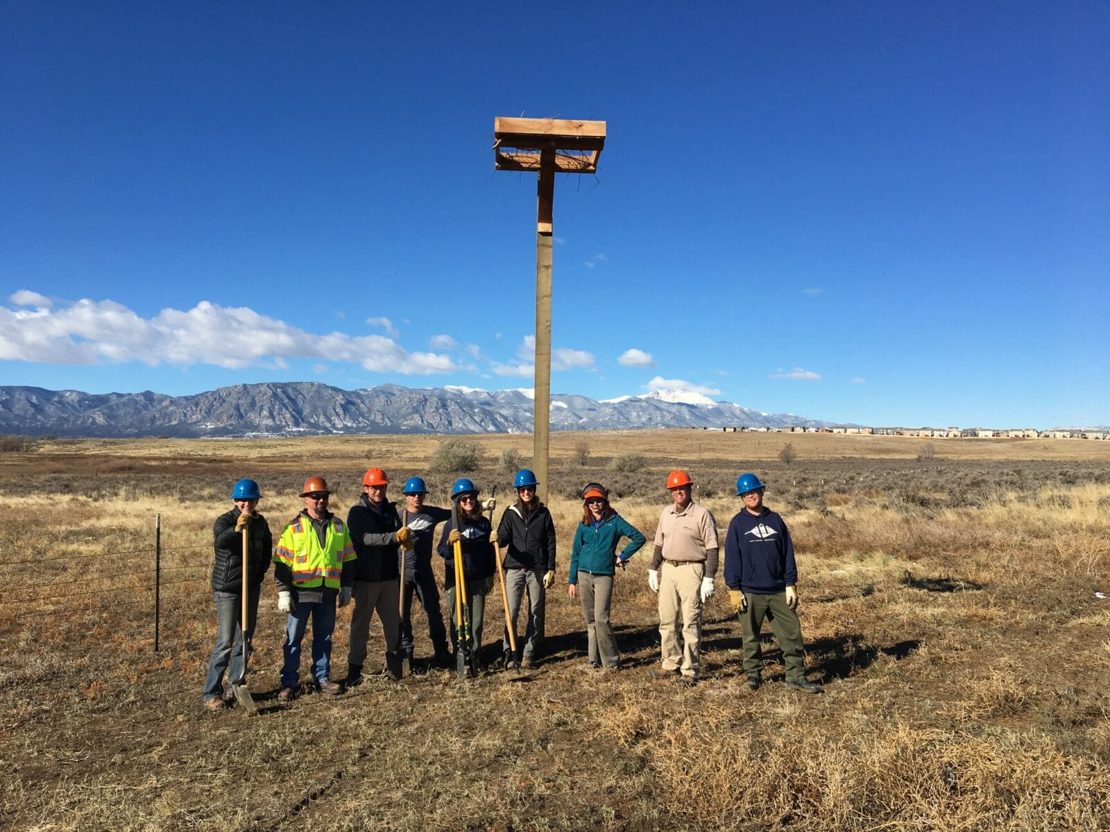 Image of the regional parks team installing bird nest boxes in Bluestem Prairie Open Space