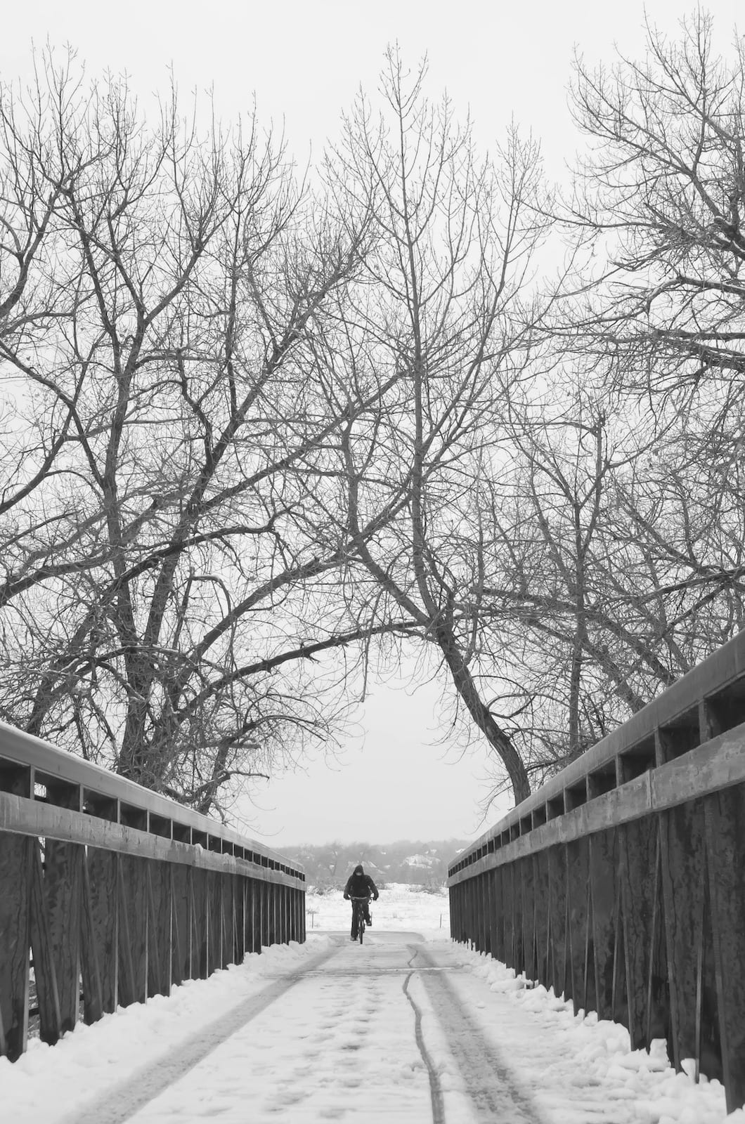 Footbridge over South Platte River Littleton CO