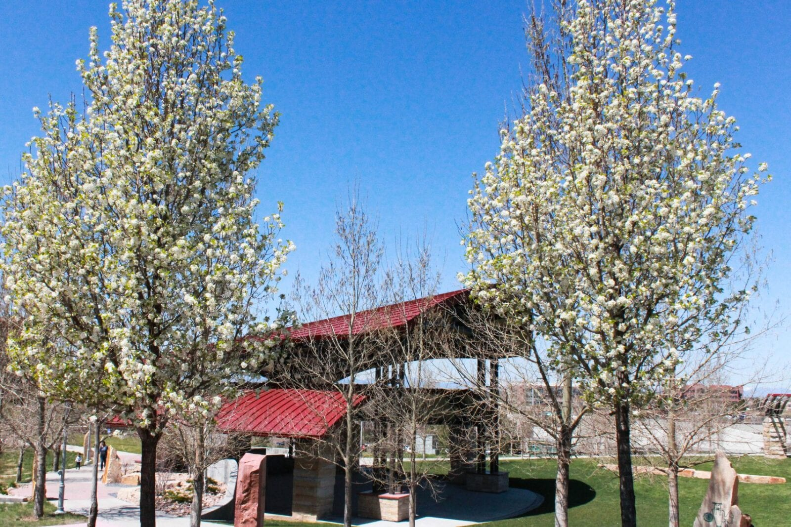Image of a shelter area in the Centennial Center Park in Colorado