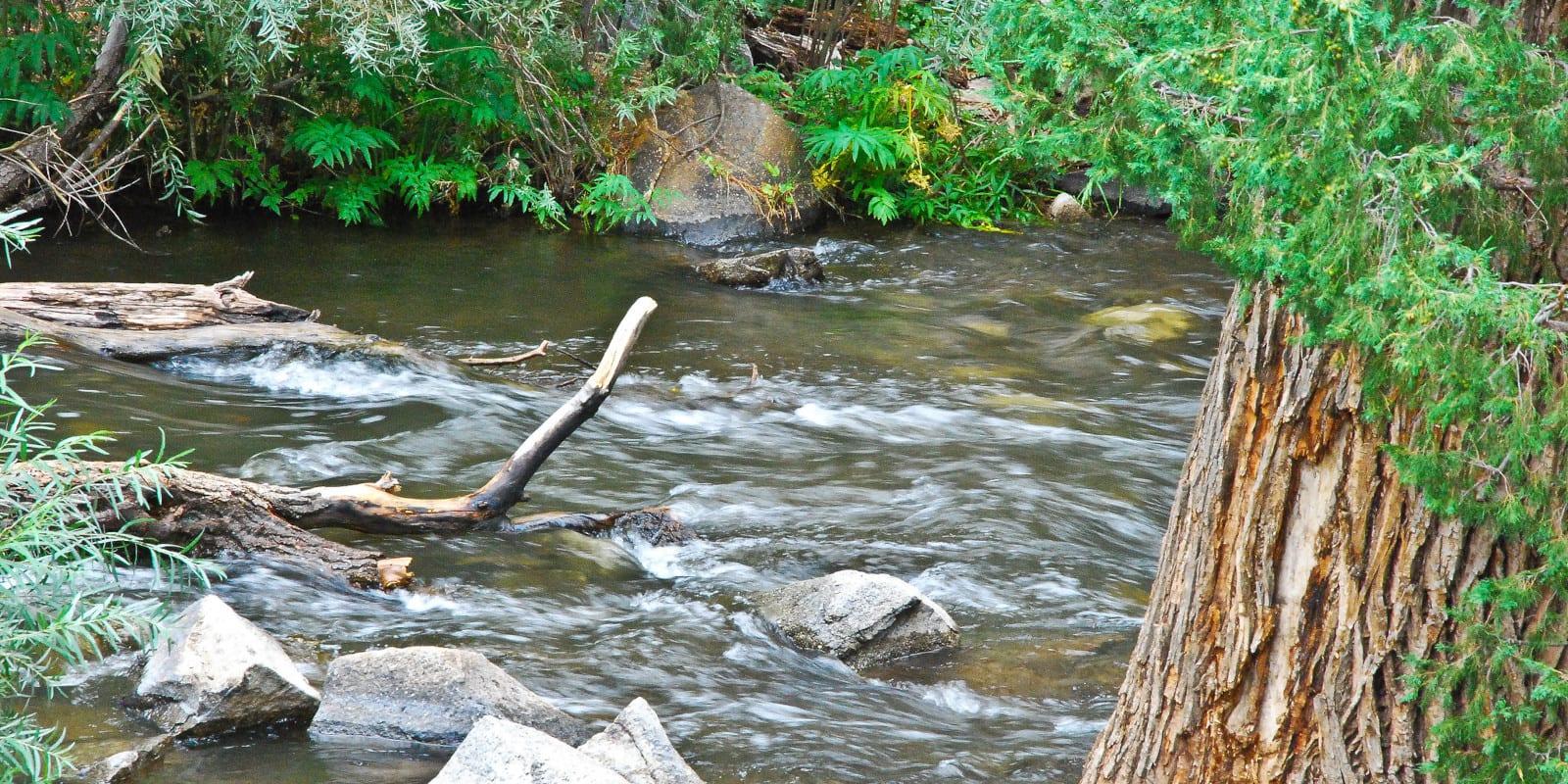 Image of the Cimarron River