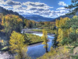Image of the Conejos River in Colorado