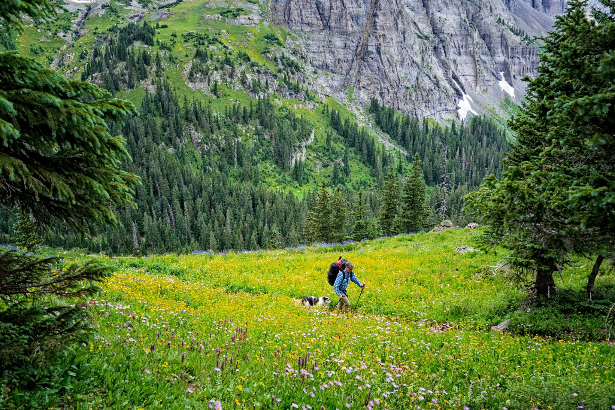 image of hiking sneffels wilderness