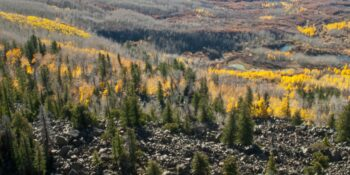 Image of the Kannah Creek in Colorado