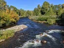Image of the Los Pinos river looking north in Colorado