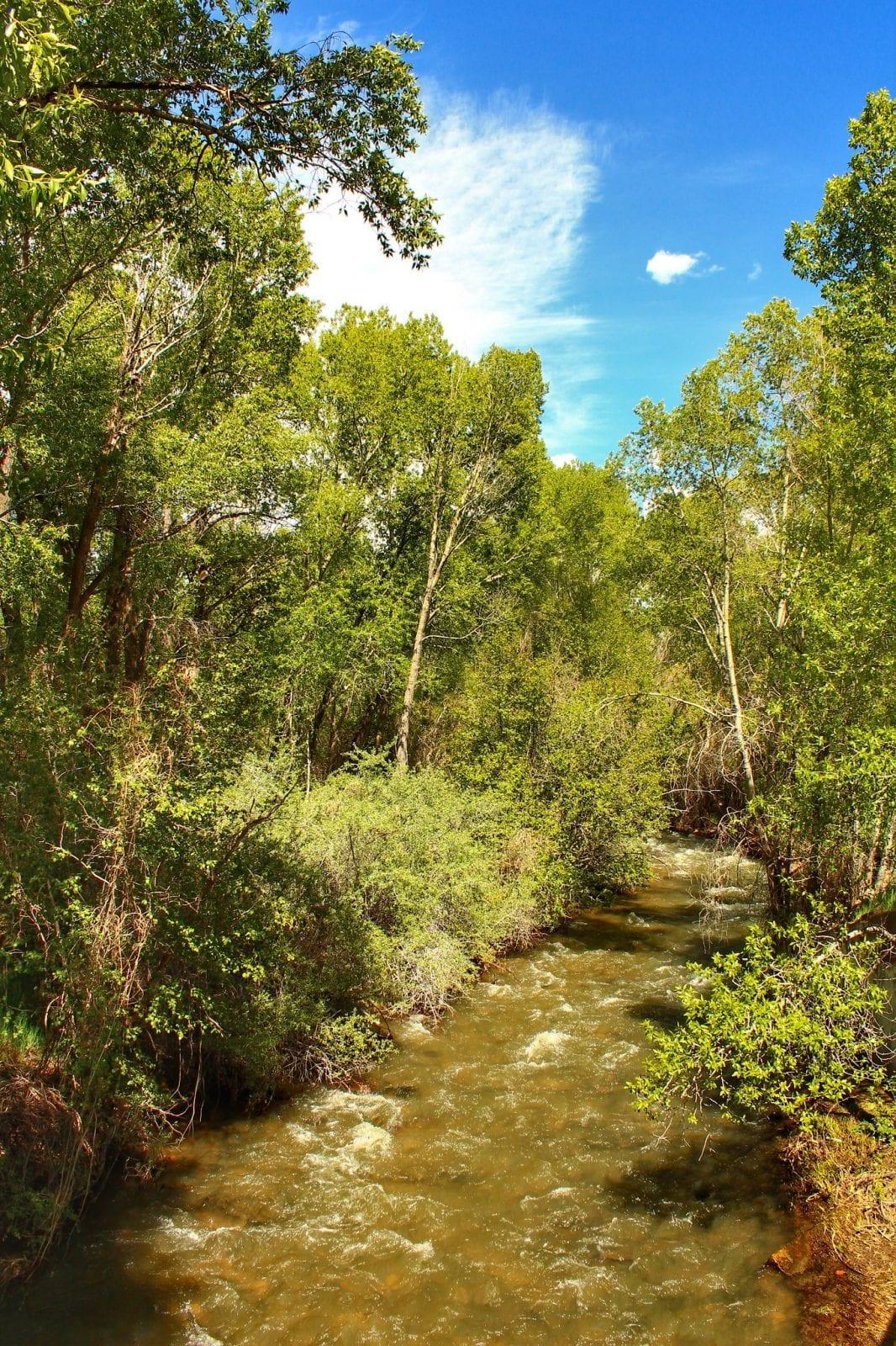 Image of the Mancos River in Colorado