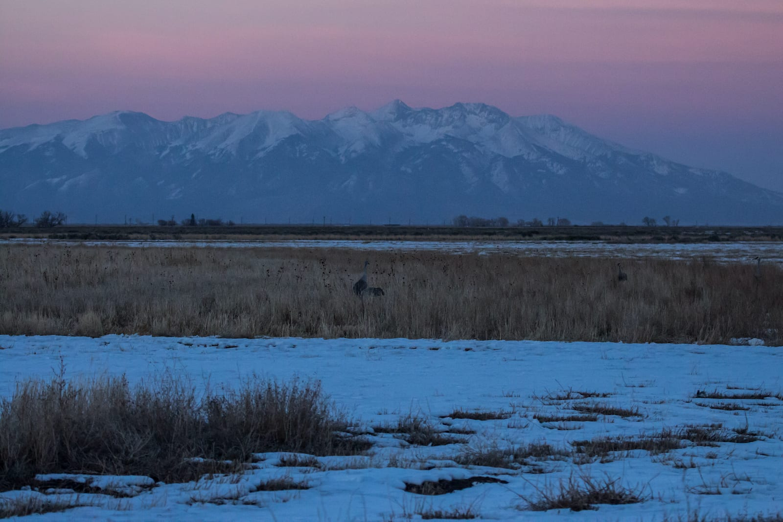 Matahari Terbenam Suaka Margasatwa Nasional Monte Vista