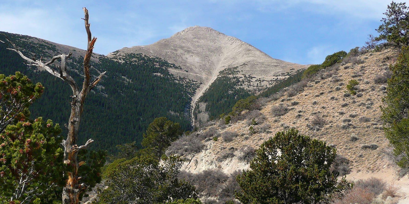 Mount Princeton Jeep Hiking Trail