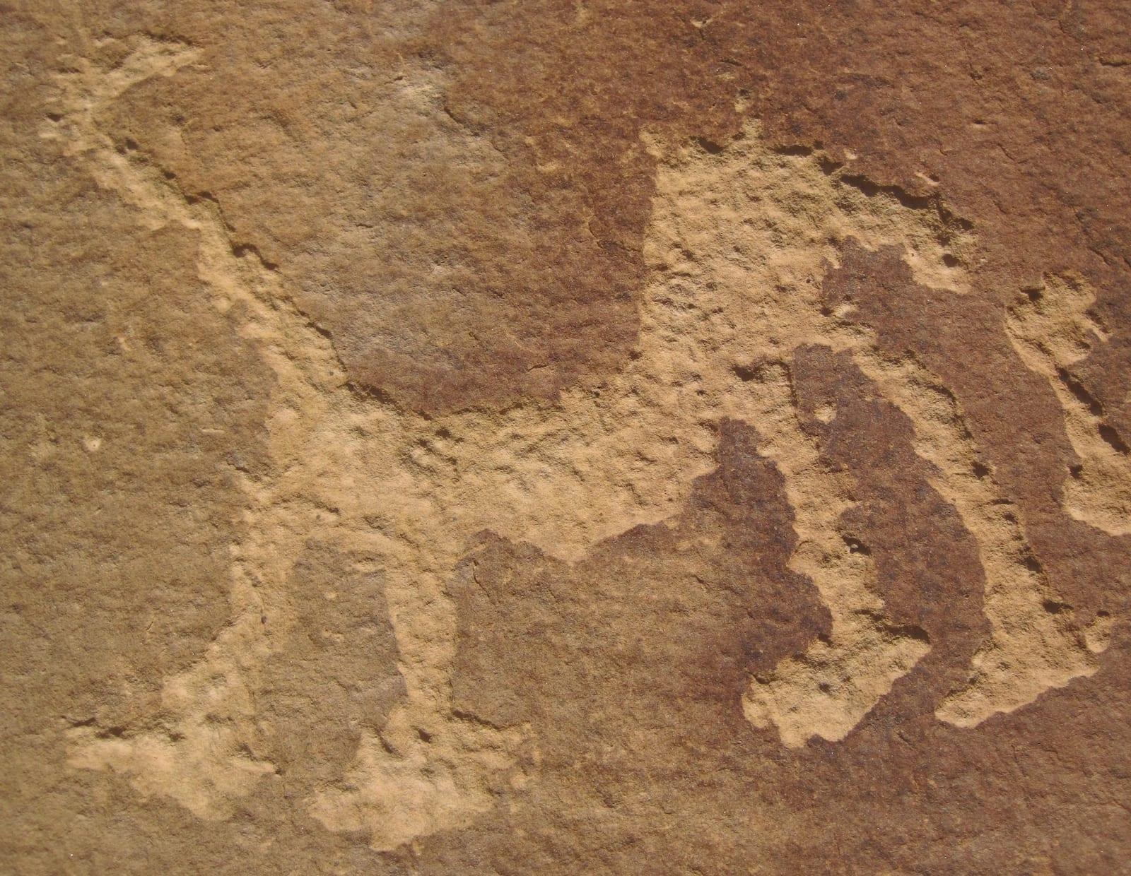 Petroglyph Point Trail Mesa Verde National Park Rock Art