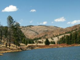 Pine Lake Pine Valley Ranch Open Space