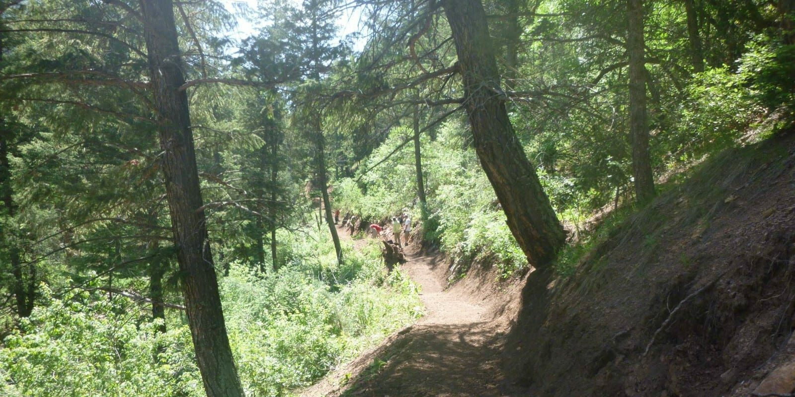 Image of the North Fork Trail at Reynolds Park in Conifer, Colorado