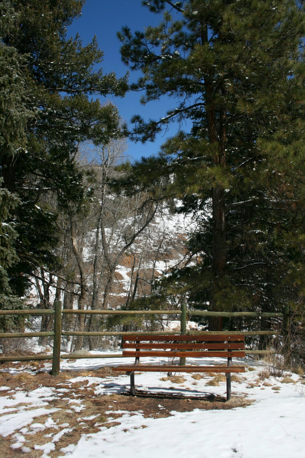 Image of a park bench in the winter at Reynolds Park in Conifer, Colorado