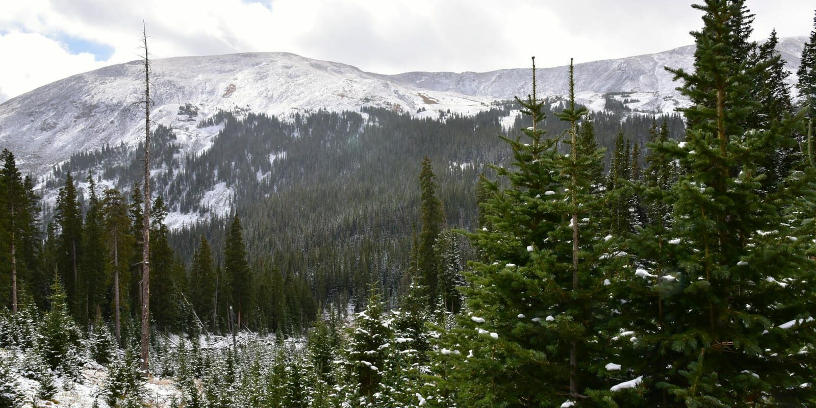 Image of the road to Geneva City, Colorado