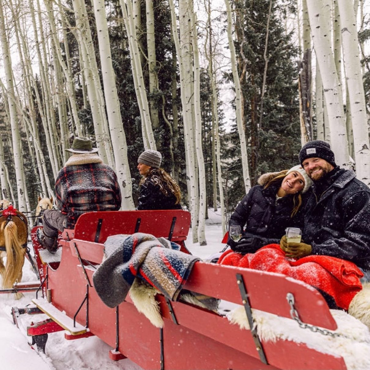 image of sleigh rides