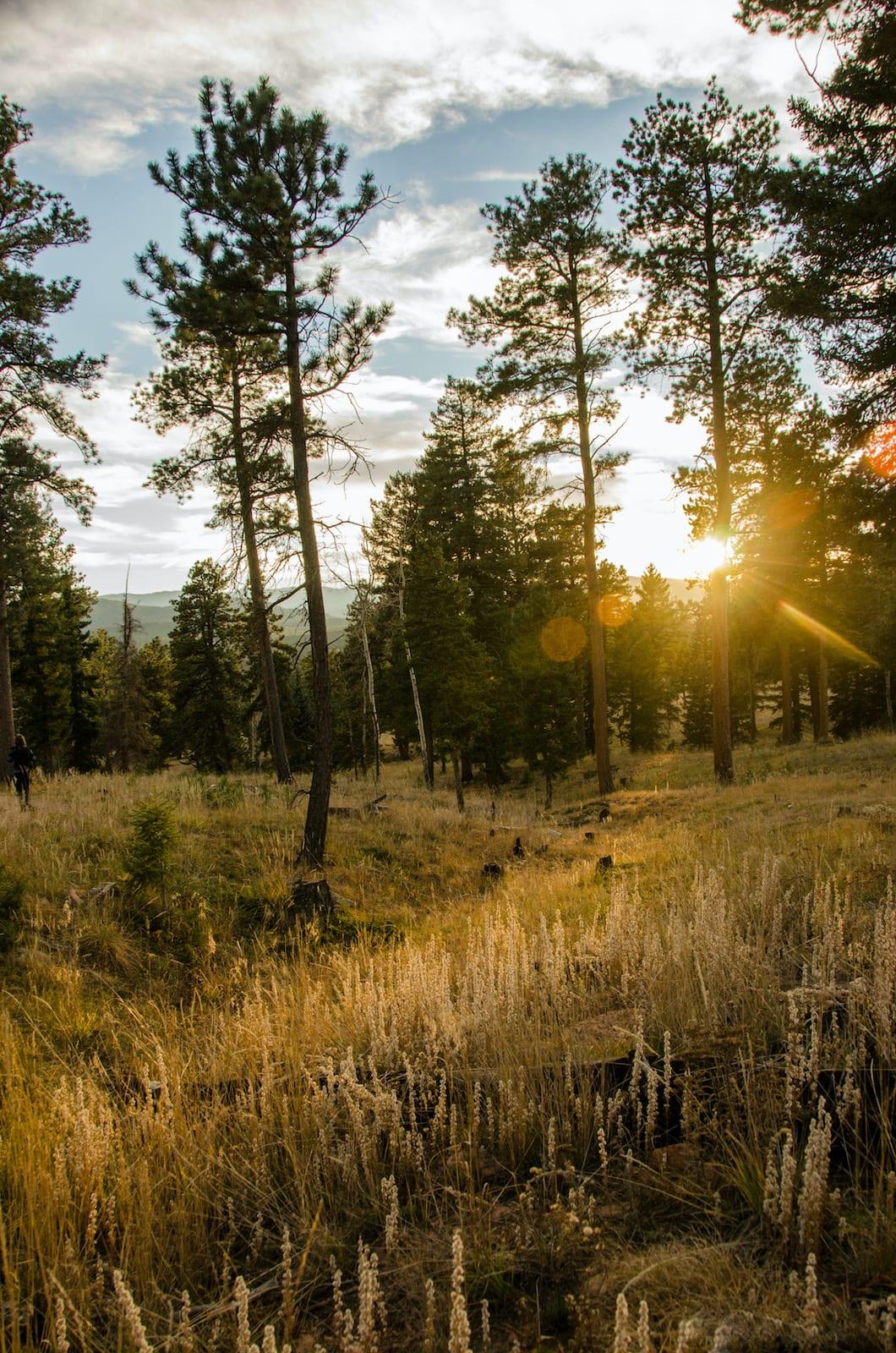 Staunton State Park Hiking Sunset