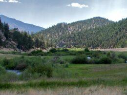 Image of the Tarryall Creek in Colorado