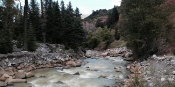 Image of the Uncompaghre River in Colorado