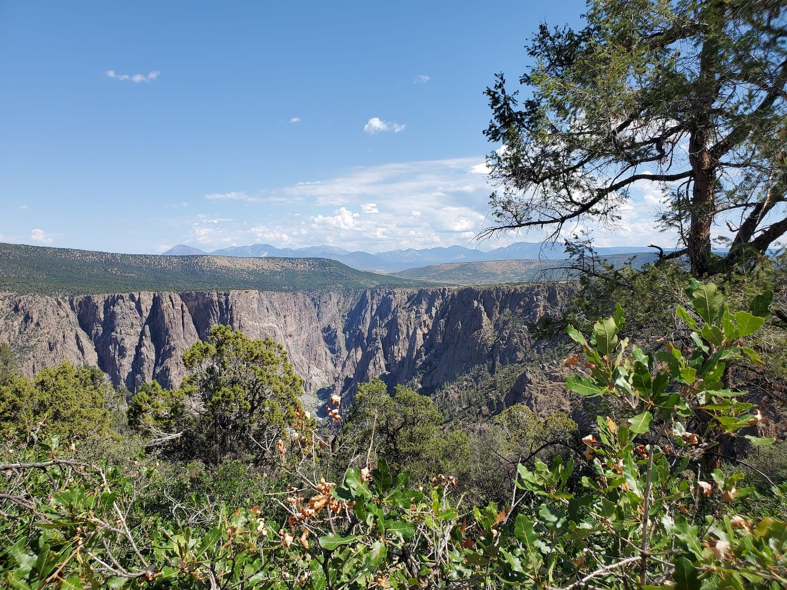 Warner Point Nature Trail Black Canyon of the Gunnison