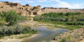 Image of the White River in Colorado