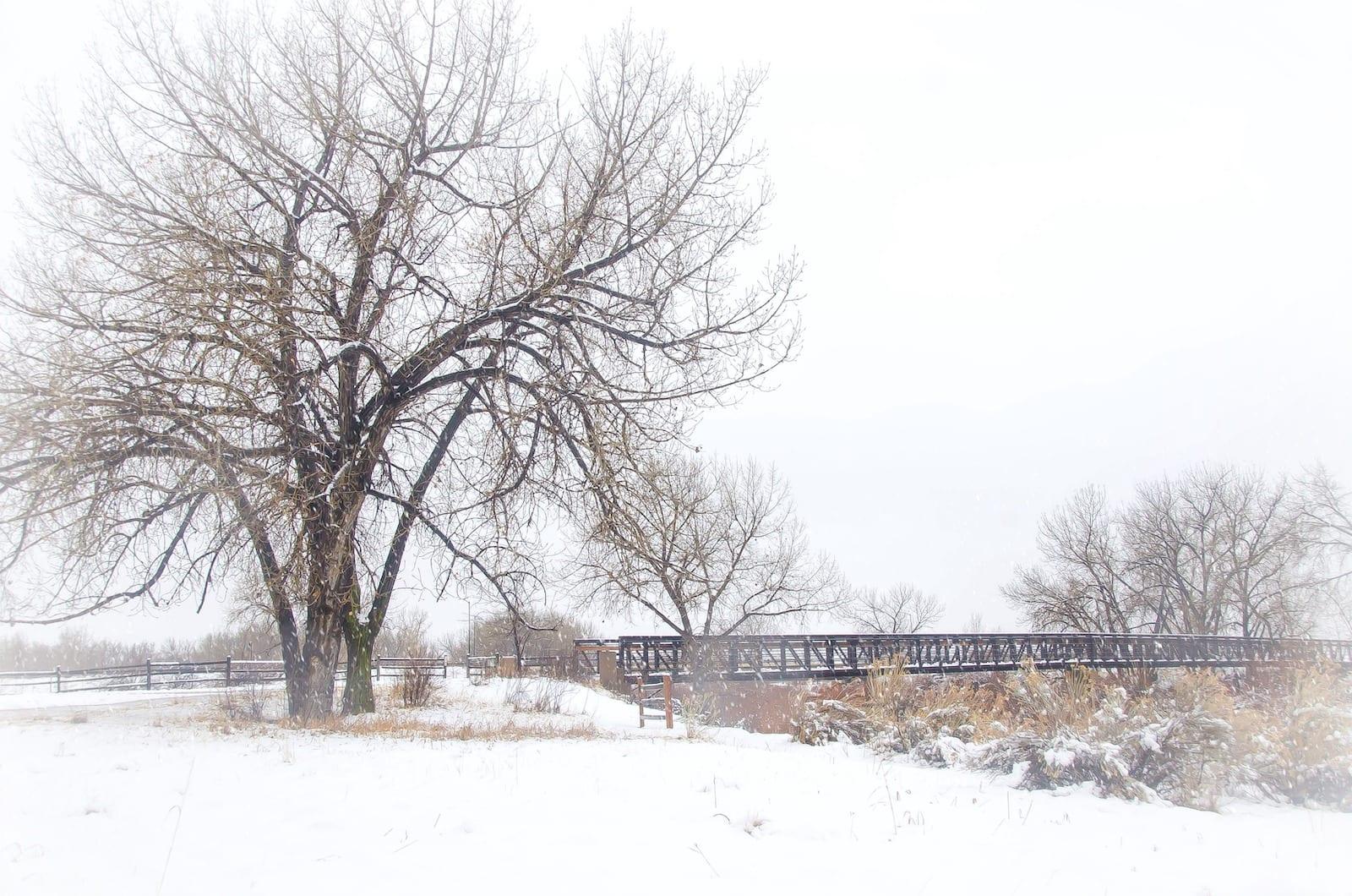 Carson Nature Center Winter Day Bridge over South Platte River