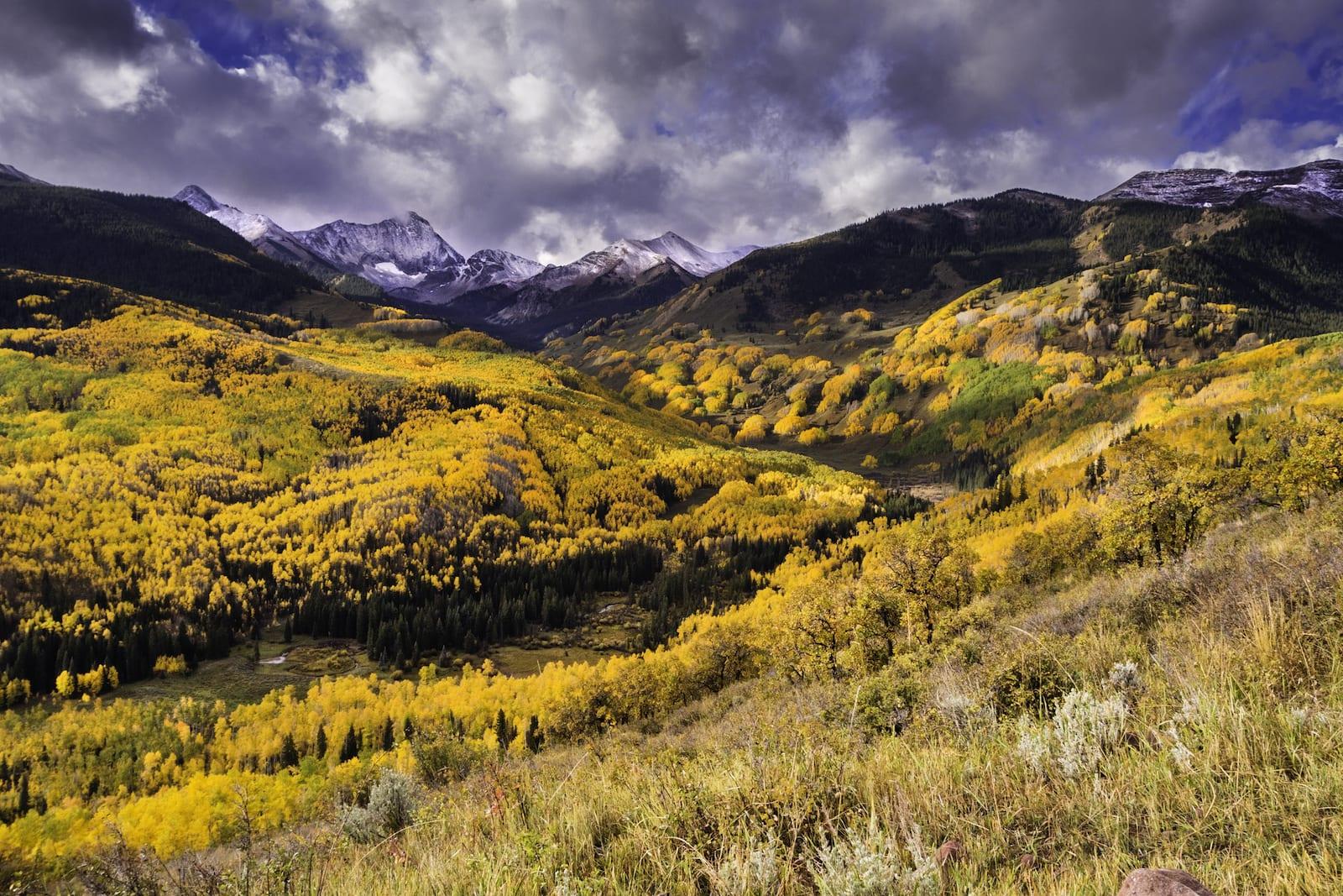 Fall Colors Below Capitol Peak, CO