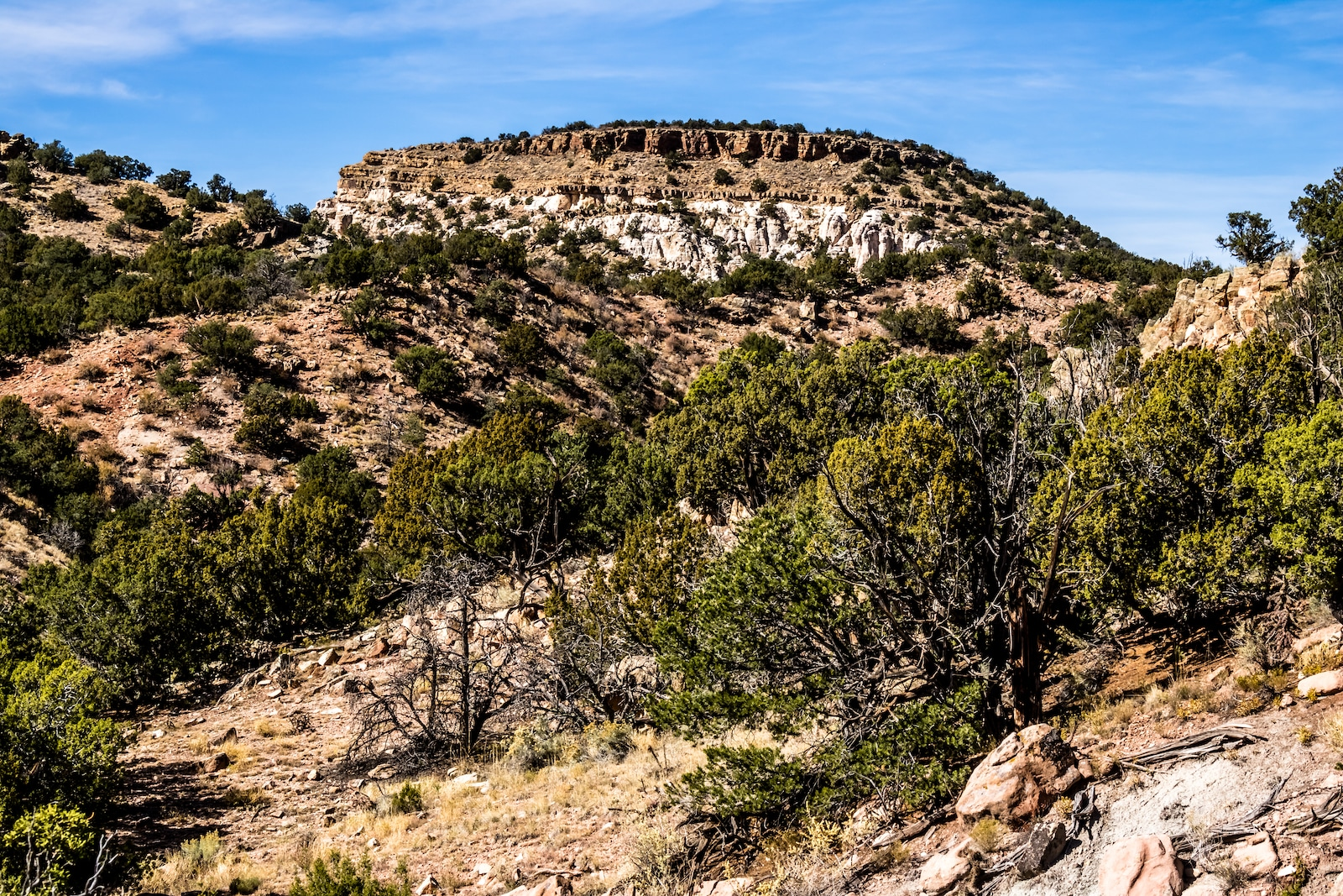 Area Fosil Taman Taman, CO