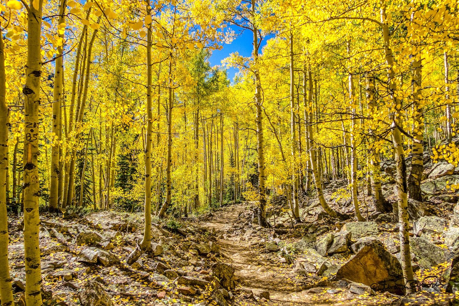 Maroon Lake Trail, CO
