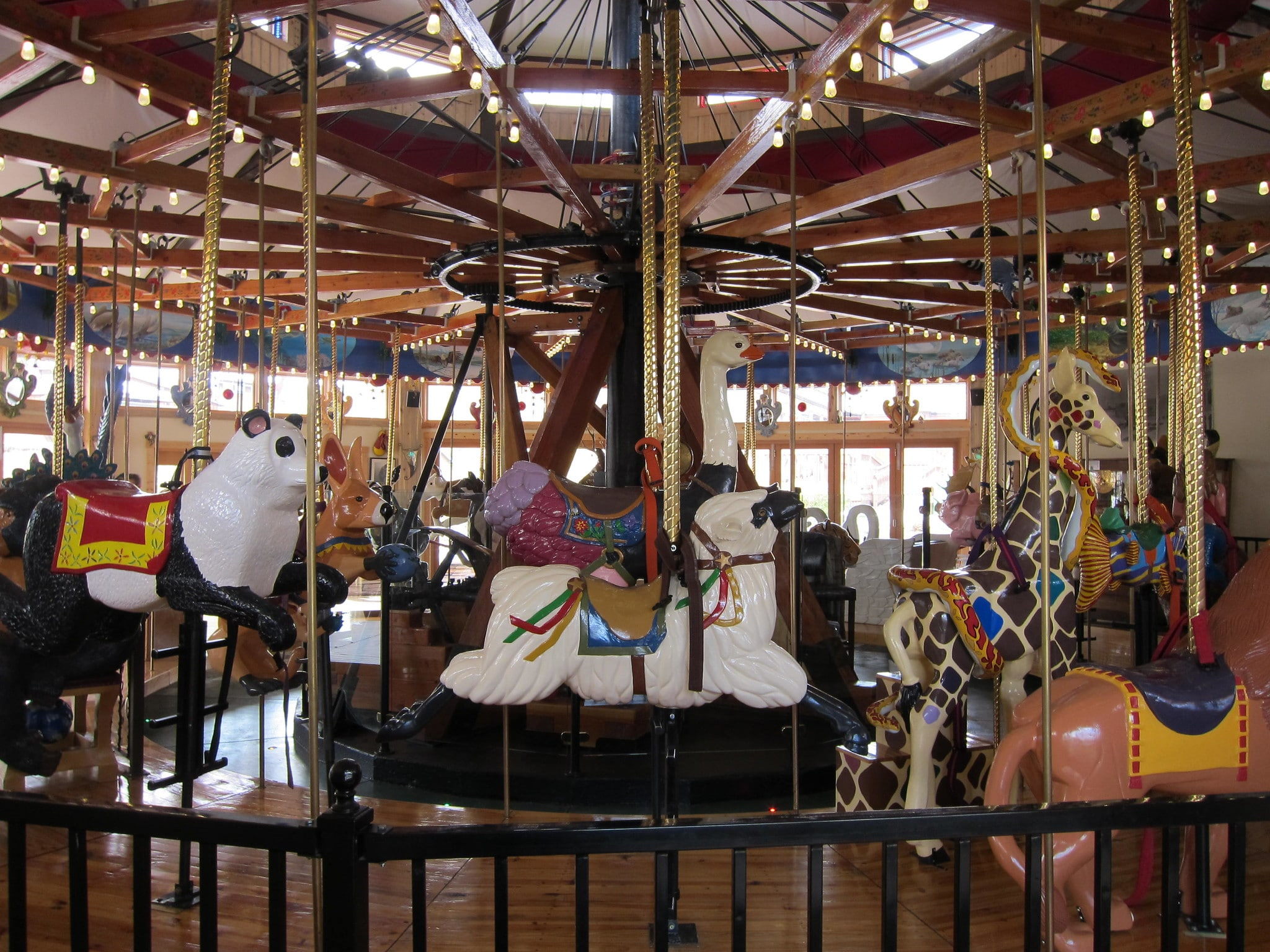 image of carousel of happiness