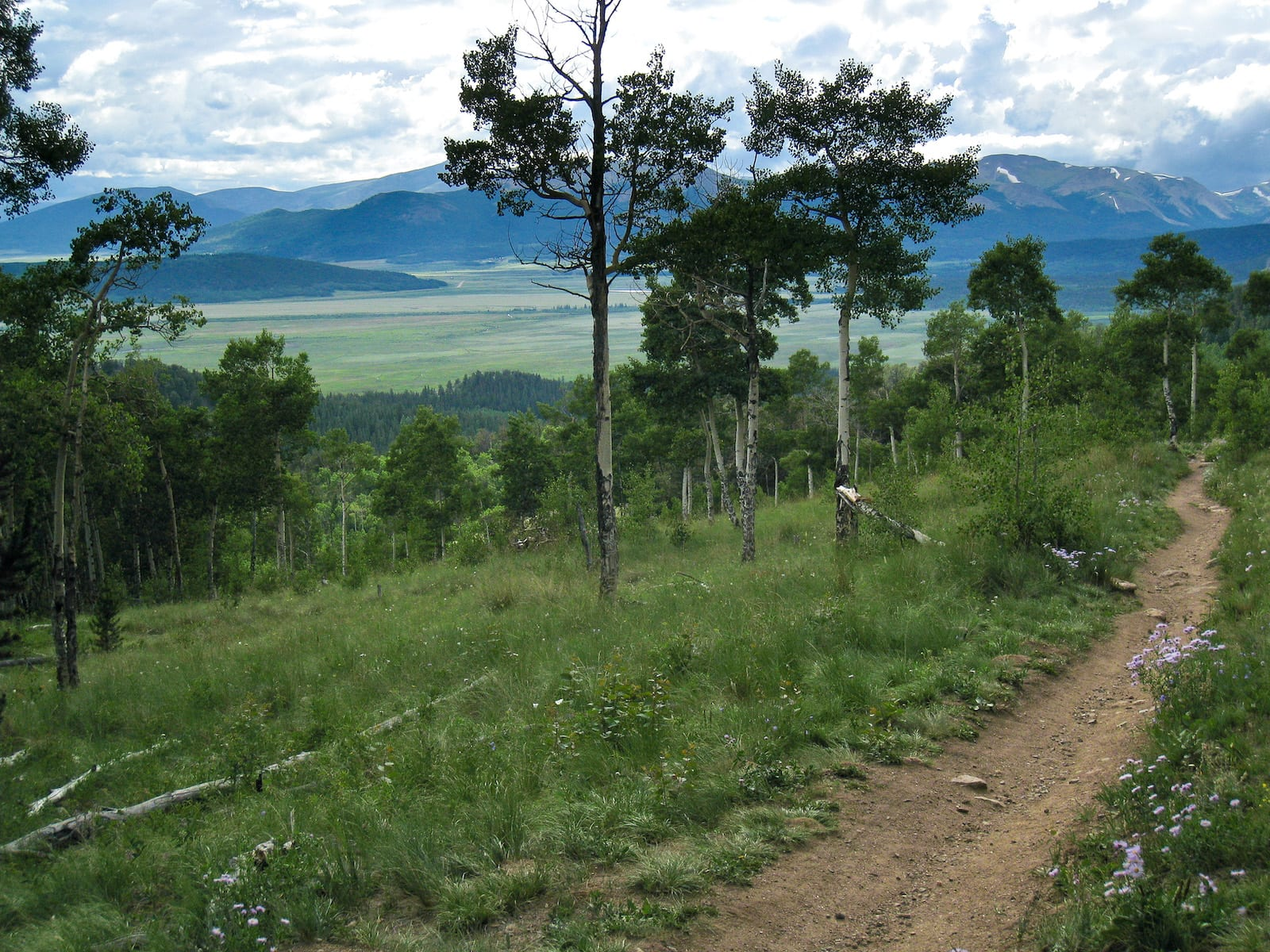 Colorado Trail on Kenosha Pass